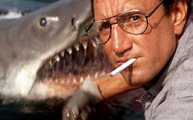 Vous avez voté : le film à voir ce dimanche 22 octobre à la télé est Les Dents de la mer