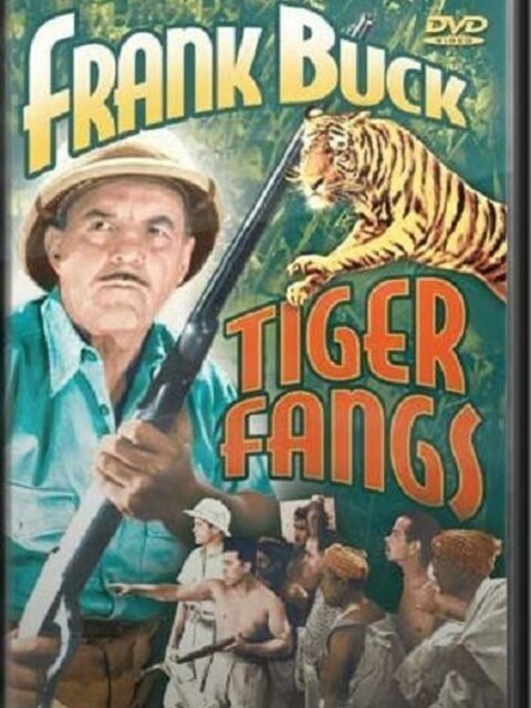Tiger Fangs