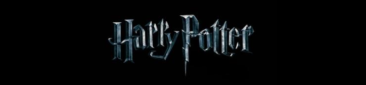 HARRY POTTER : la saga magique ! ⚡