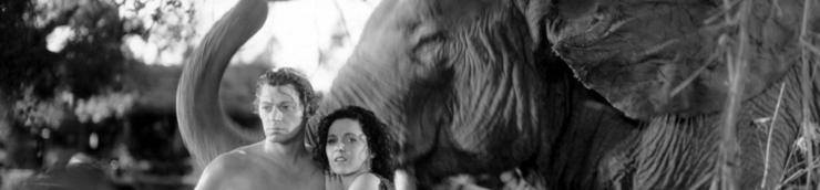 Pachidermofilms (éléphants) [Chrono]